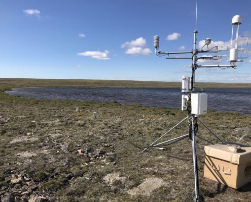 ecologie des sols de l'extreme arctique